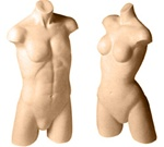 Mens Free Standing Active Torso Full Body Forms