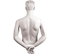 Male Mannequin Arms: Hands Behind Back - White