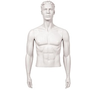 Male Mannequin Arms: Arms by Side - White